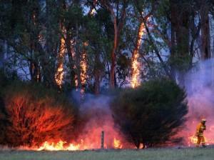 La ola de calor está provocando decenas de incendios por todo el país @YahooNewsUK