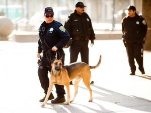 Policía con apoyo canino. Imagen de Flickr CC.