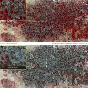 El antes y el después de la localidad nigeriana de Baga. por AI MICHAH FARFOUR DigitalGlobe EFE